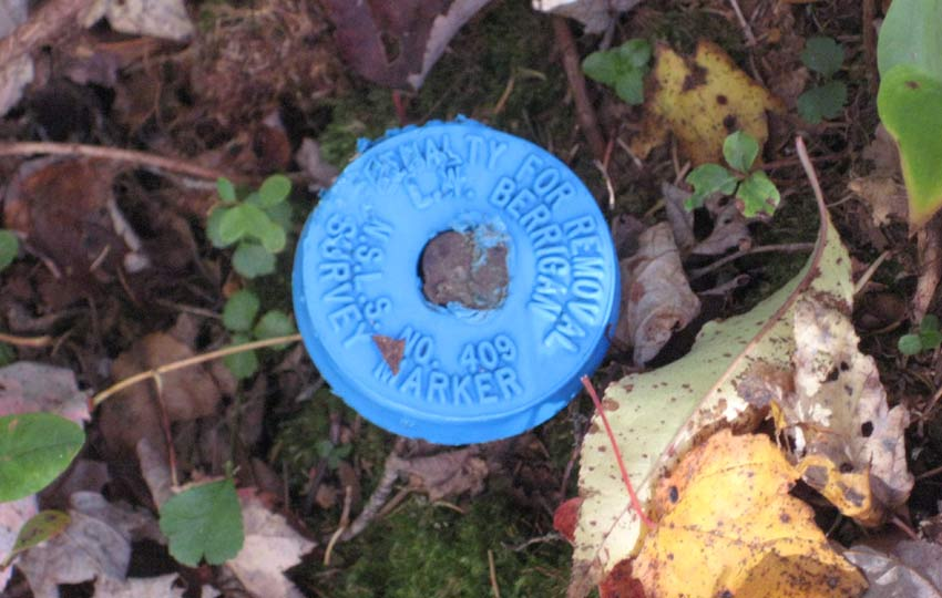 survey marker lot st.mary's river